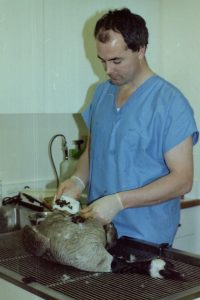 Dr. Pat Hourigan